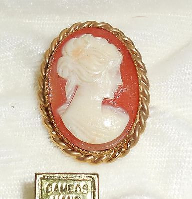 Vintage Gold Plated Polymer Resin Cameo Pin In Box Excellet No Wear Condition